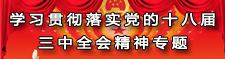 学习贯彻落实党的十八届三中全会精神专题